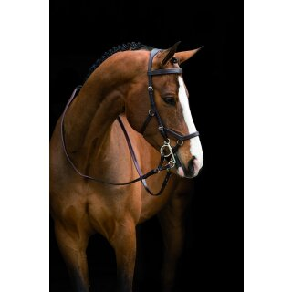 Rambo Micklem Deluxe Competition Bridle engl. leather